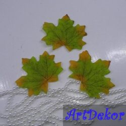 Листик клена зеленого цвета